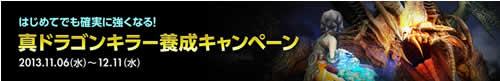 ドラゴンネスト_真ドラゴンキラー養成キャンペーン、初心者、8人制ダンジョンに挑戦