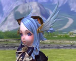 羽の髪飾り