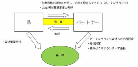 アーキエイジ_神奈川県森林再生パートナー制度詳細